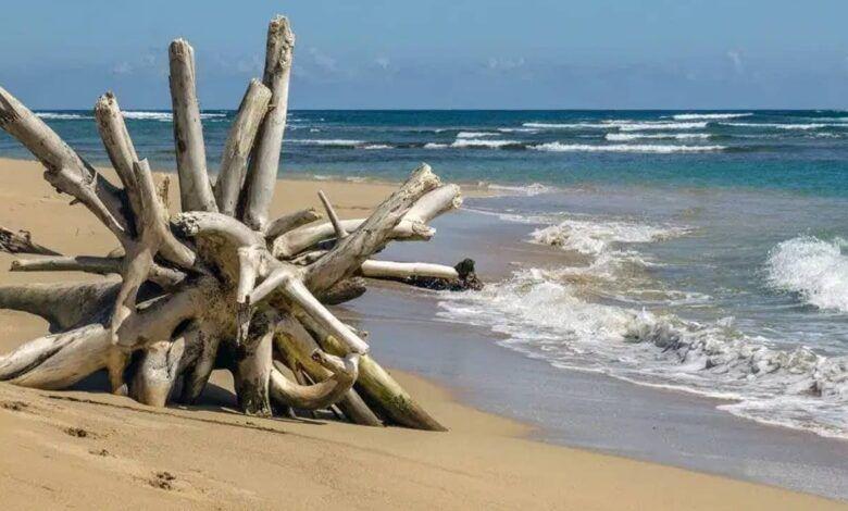 Colombia rechaza que Nicaragua incluya en reserva caribeña territorios que no son suyos