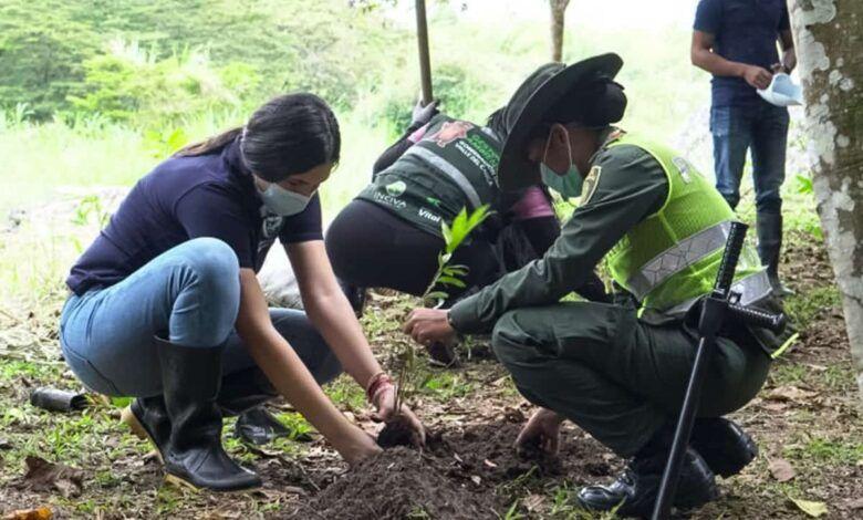Conmemoran el Día de la Tierra con la siembra de 3 mil guayacanes y frutales