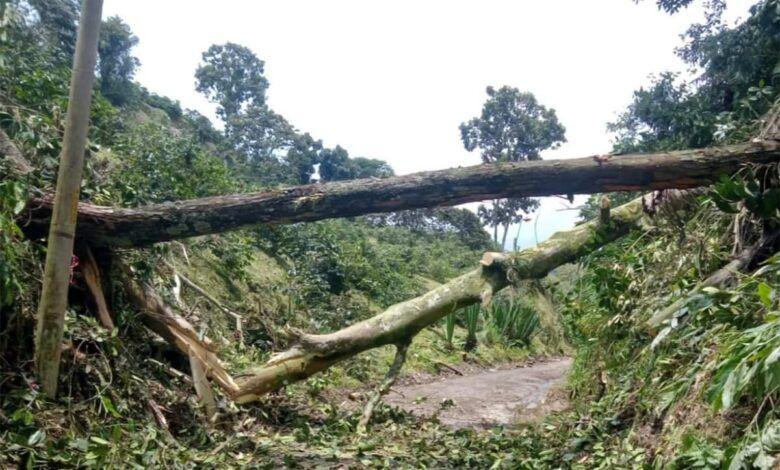 Dosquebradas en alerta ante emergencias por lluvias